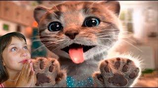 ПРИКЛЮЧЕНИЕ МАЛЕНЬКОГО КОТЕНКА мультик про котика для детей подарок конфет и желейный медведь