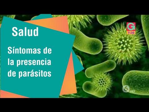 การรักษาสำหรับโปรแกรม Giardia