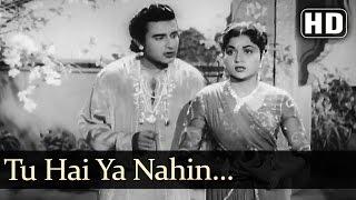 Tu hai Ya Nahin - Manhar Desai - Nirupa Roy - Janam Janam