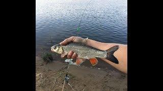 Рыбалка в подмосковье река ока серпухов