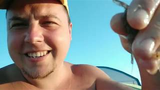 Как ловят креветок в железном порту