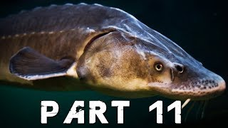 FAR CRY 5 Walkthrough Gameplay Part 11   THE ADMIRAL FISH (PS4 Pro)