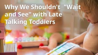 "Why We Shouldn't ""Wait and See"" with Late Talking Toddlers"