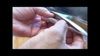 イワシの手開きの仕方