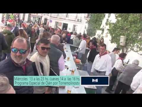 Promo de la Fiesta del Tostón Popular de Ojén 2019