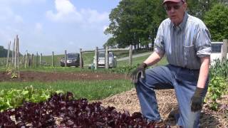 Garden to Fork Program at Masonic Village at Elizabethtown