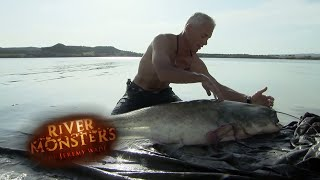 Super-Sized Spanish Wels Catfish - River Monsters