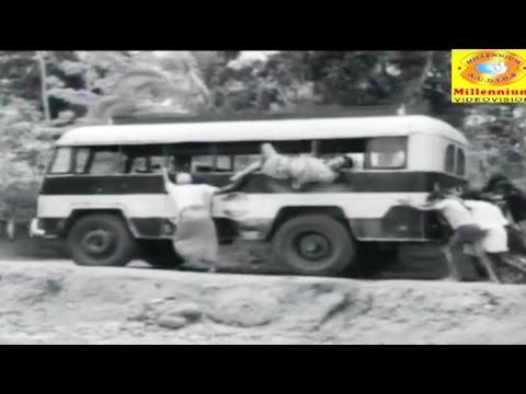 Malayalam Evergreen Film Song | Thallu Thallu | Aabhijathyam | Ambili, Adoor Bhasi, Latha Raju