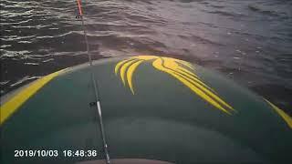Рыбалка шатура форум