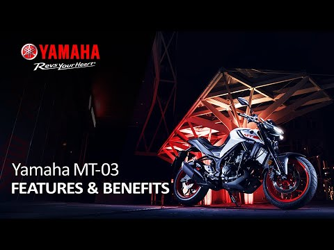 2021 Yamaha MT-03 in Carroll, Ohio - Video 2