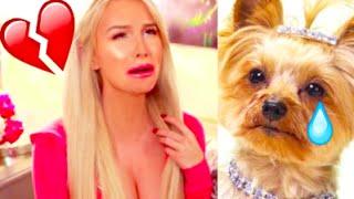 MY DOG WAS RAPED   Gigi