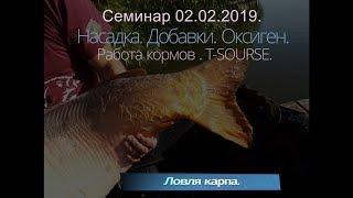 Бетаин в прикормке для рыбы