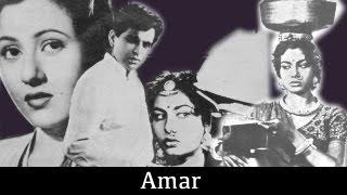 Amar- 1954