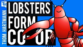 Lobster Men Form Workers Co-Op With Machinists!