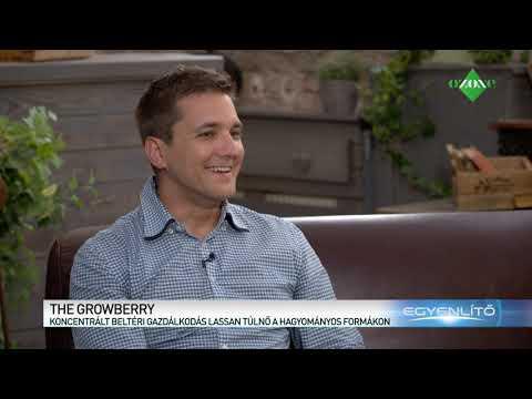 Growberry - Csapatvideó