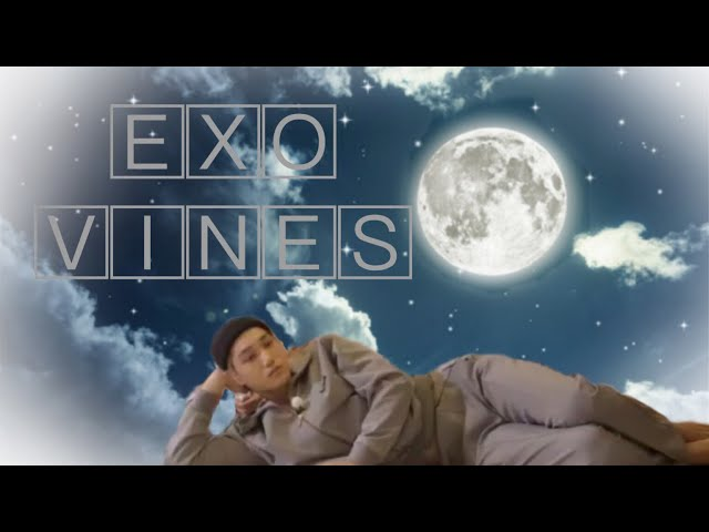 EXO vines to watch under the moonlight