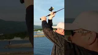 Рыбалка с берега в кабардинке