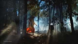 Unknown Source - Anima (TrancEye Remix) [Music Video]ᴴᴰ
