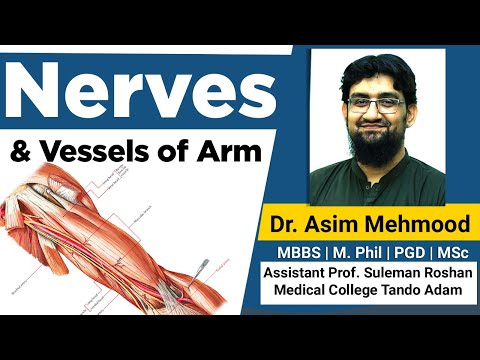 Boli ale articulațiilor picioarelor la bărbați