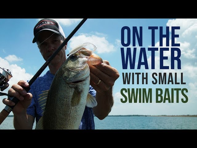 On The Water With Small Swim Baits