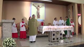 Canto de Entrada - Missa do 3º Domingo do Tempo Comum (26.01.2019)