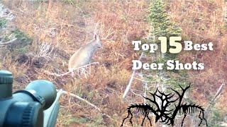 TOP 15 BEST DEER HUNTING KILL SHOTS
