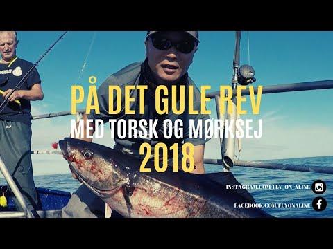 Fiskeri på Det Gule Rev