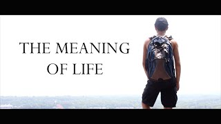 Meaning of Life by Sam Ashurov and Mike Klubeck - Short Film Review