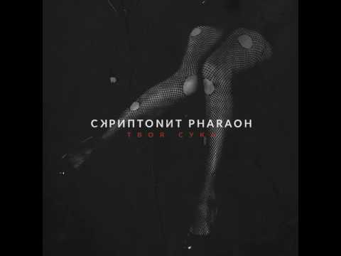 Скриптонит ft. Pharaoh – Твоя Сука