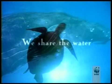 World Wildlife Fund (WWF) Commercial (2009) (Television Commercial)