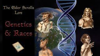 The Genetics of the Races of Tamriel - The Elder Scrolls Lore