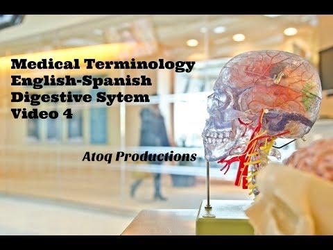 Spanish English Medical Interpreter Translator - Medical ... - YouTube