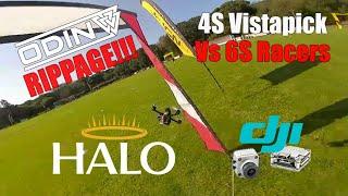 Odin Rippage - Vistapick DJI FPV Drone Racing - Caddx Vista - HaloRC