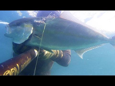 La pesca in serbatoio di Istra di video