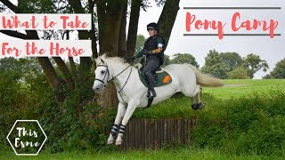 PONY CAMP   THE HORSE   What To Take   Pony Club 2018   This Esme