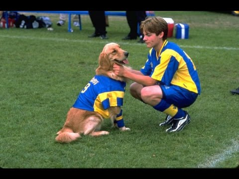 Air Bud: World Pup (2001) - Movie Review Mp3