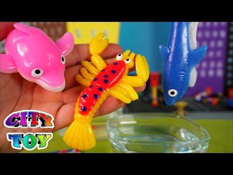 Juguetes blandos y elásticos 🐬🦐🦈 Sticky club Ocean en City Toy