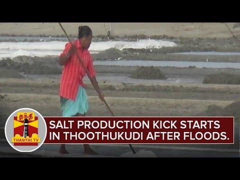 Salt-Production-kick-starts-in-Thoothukudi-after-Floods-Thanthi-TV