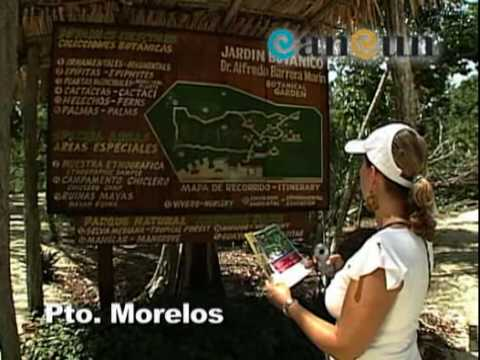 Cancun Holidays - Puerto Morelos
