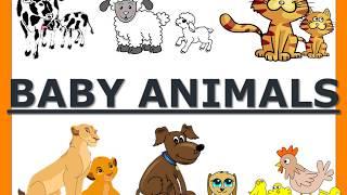 BABY ANIMALS||  HOW TO TEACH A CHILD ABOUT BABY ANIMALS|| PRESCHOOL AND KINDERGARTEN