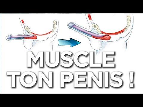 Probleme de erecție masculină
