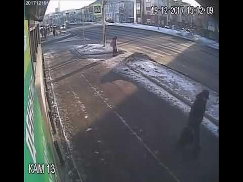 Женщина за рулем Nissan X-Trail  сбила девочку на переходе