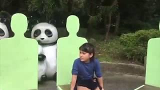 taipei zoo maokong gondola - मुफ्त ऑनलाइन