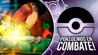 Toucannon  - (Pokémon) - POKÉMON SOL & LUNA: POKEGENIOS EN COMBATE, TOUCANNON