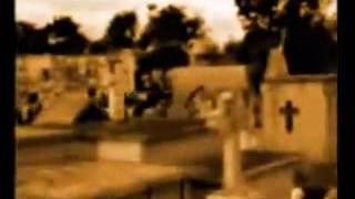 Mal Bicho -Los Fabulosos Cadillacs-