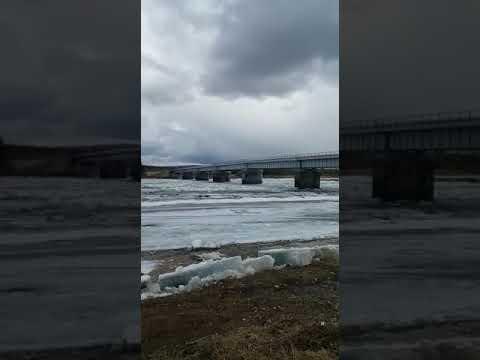 На Верхней Амге наблюдается густой ледоход (ВИДЕО) | ЯСИА
