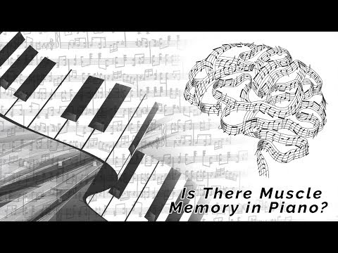 Is there Muscle Memory in Piano?