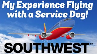 Flying Southwest with a Service Dog   Flying with a Service Dog