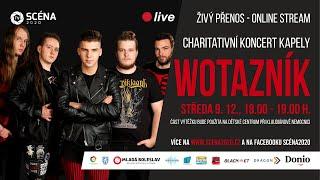 Video Wotazník - LIVE STREAM 2020