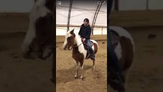 Pony Pro Tip: Staying round throughout the turn drill